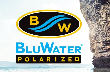 brand-bluwater-logo